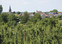 Tips voor Fietsers - Fietsen in en om Limburg 2021 - Dienst Toerisme Kortessem