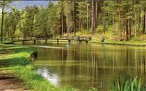 Tips voor Fietsers - Fietsen in en om Limburg 2020 - De Peerdenposterij Tessenderlo