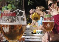 Tips voor Fietsers - Fietsen in en om Limburg 2019 - La Reine Sucrée Houthalen-Helchteren