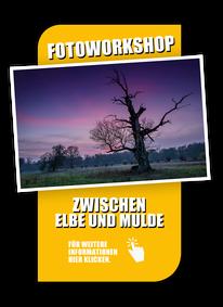Anbieter von Fotoreisen Elbe und Mulde, Landschaftsfotografie