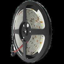 TIRA LED 2835, 300 LEDS, B. FRIO, INTERIOR IP20, 5m, 24W, MODELO DL-WTI-005 DILAE