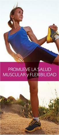 Promueve salud muscular y flexibilidad
