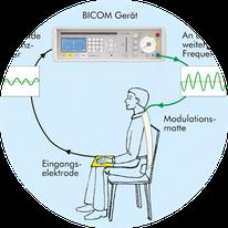 Bicom Bioresonanz bei Praxis Bodycare in Rombach, Aarau