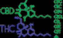 cannabinoides cbd et thc