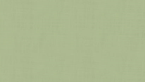 掛軸表装 無地緞子 山葵色