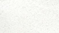 掛軸表装 仏用緞子 白綸子唐草紋