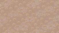 掛軸表装 洛彩緞子 重ね扇紋