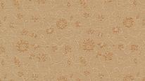 掛軸表装 洛彩緞子 花菱地紋