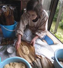 フジヱおばさんが先生です
