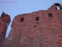 #Burgmauer  #Ruine #Burg #Hohenecken #Kaiserslautern