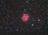 IC 5146 , 1200mm