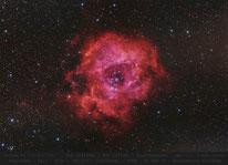 NGC 2244  ,  Rosettennebel