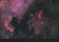 IC 5070  ,  Pelikannebel