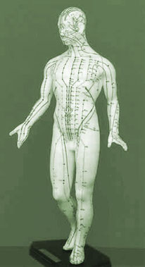 Meridiane im Körper