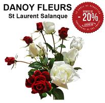 DANOY FLEURS  réduction loisirs 66