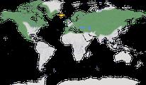 Karte zur Verbreitung des Kolkrabens (Corvus corax)