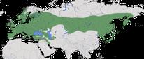Karte zur Verbreitung der Bartmeise (Panurus biarmicus)