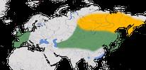 Karte zur Verbreitung der Rabenkrähe (Corvus corone corone)