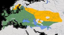 Karte zur Verbreitung der Dohle (Corvus monedula)