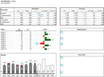 Dashboard mit Excel