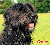 Fonzi wohnt seit November in Oberfranken!