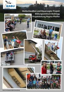 Bild: Schwalben und Mauersegler - Bildungszentrum Bodnegg -  NABU Ravensburg