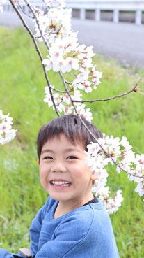 桜と子供の笑顔の写真フリー素材 Sakura and children's smile photo free material