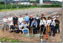 猛烈な暑さの中、休耕水田にトマトを契約栽培して収穫する。