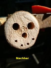 Foto: NABU Büttelborn [ch]