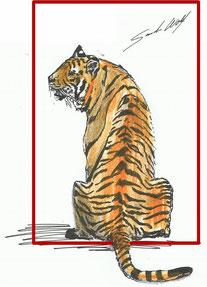 Postkarte: Tiger