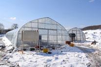 雪解けのイメージ(2012-3月)