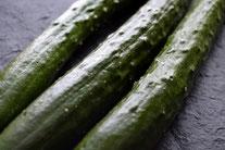 無農薬野菜 胡瓜 スリーエフ農法