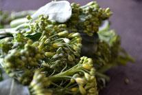 無農薬野菜 ブロッコリー スリーエフ農法