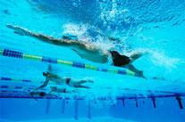 Erwachsene Crawl-Schwimmer