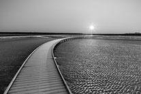 Morgensonne am Langwarder Grooden. Foto: Silke Lorenz
