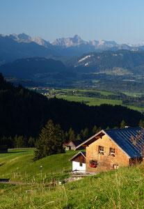Alpe am Grünten