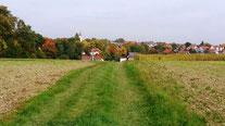 Ursensollen: In den schönsten Farben des Herbstes ist das Ziel nah