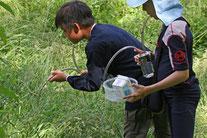Insektensauger, Foto: NABU Wiesloch