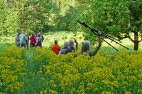 Exkursion in NSG Gräbenwiesen, Spechbach, Weidichberg