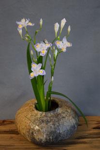 「信楽花器」(21 x 12.5 cm)