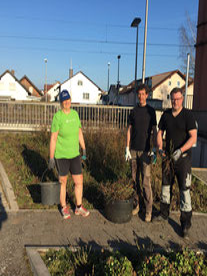 Fledermausexkursion in den Fronhäuser Wald