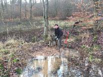 Montage der Mehlschwalbennester am Wohnhaus von Elke und Dieter Schwing