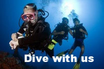 we work with the professional diving center.