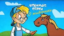 О животных. Сборник 2