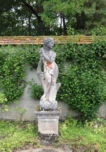 à l'arboretum d'Ingrannes
