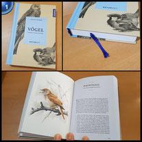 Vögel: Zwischen Himmel und Erde (ISBN-13: 978-3440158708)