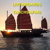 Liveaboard , Tauchsafari