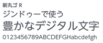 新丸ゴ R(ゴシック)