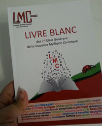 LMC FRANCE LIVRE BLANC 2 seconds ETATS GENERAUX LMC 2016 cml world day