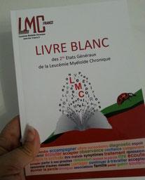 LMC FRANCE LIVRE BLANC 2 seconds ETATS GENERAUX LMC 2016 cml world day